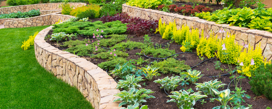 Display image for Landscaping Services
